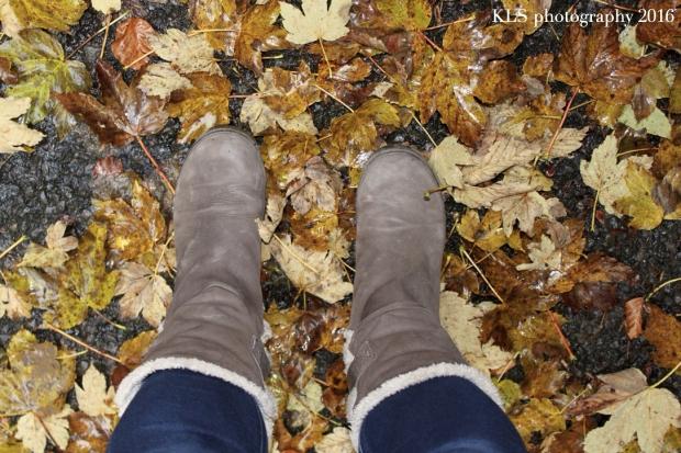 5-uses-autumn-leaves1